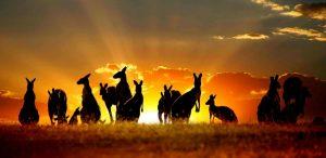 Tìm hiểu về du học Úc