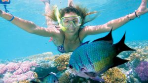 Rặng san hô Great Barrier