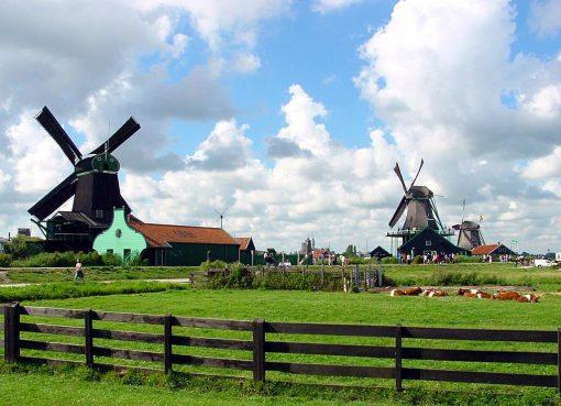 Du học Hà Lan vừa học vừa làm và những điều cần biết