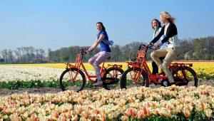 Du học Hà Lan nhóm ngành kinh tế