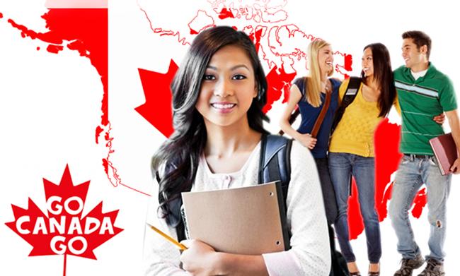 Phân tích ưu điểm và hạn chế của 3 hình thức nhà ở cho du học sinh Canada