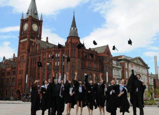 Những ngành được du học sinh Anh lựa chọn nhiều nhất