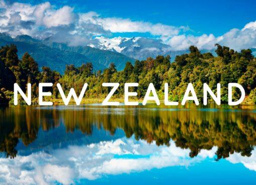 Du học New Zealand có an toàn không?